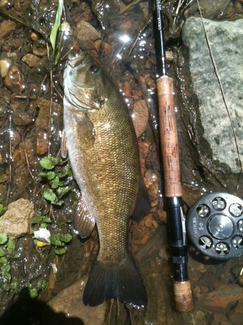 RCC Smallie 1 May 12